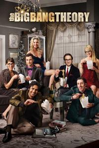 The Big Bang Theory Seasons 1-11 DVD Box Set