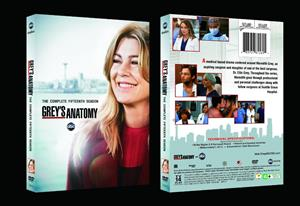 Grey's Anatomy Season 15 DVD Set